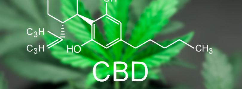 cannabis cbd components image