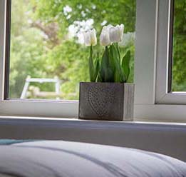 Flowers On Bedroom Windowsill