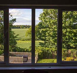 The rehab gardens seen through the window